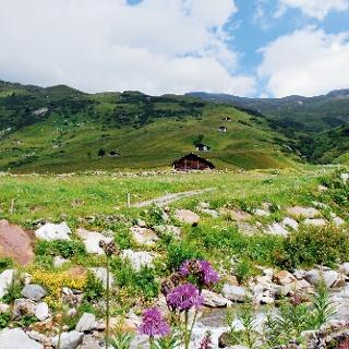 Oberhalb des Dorfes Vals.