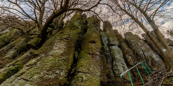 Organ pipes along the Blue Trail