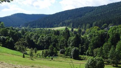 Wiesen zum Vernaschen in Rittersgrün