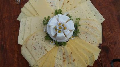 Käsevariationen Landwirtschaftsbetrieb Nestler