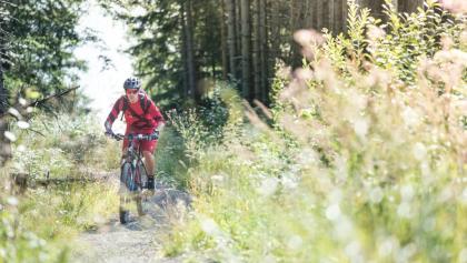 Biken am Tegernsee
