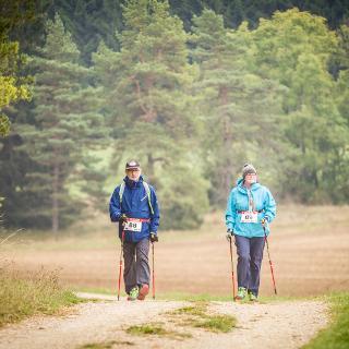 Abwechslungsreiche Strecken laden zum Nordic-Walking ein.