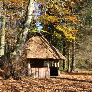 Schutzhütte Brekendorfer Forst