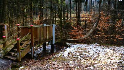 Hängebrücke im Bingerwald