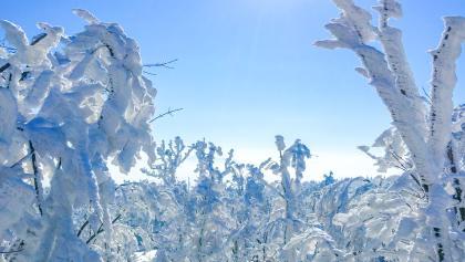 Die Matraswarte gewährt einen herrlichen Ausblick in die bizarre Winterlandschaft