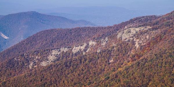 Vadálló-kövek ősszel
