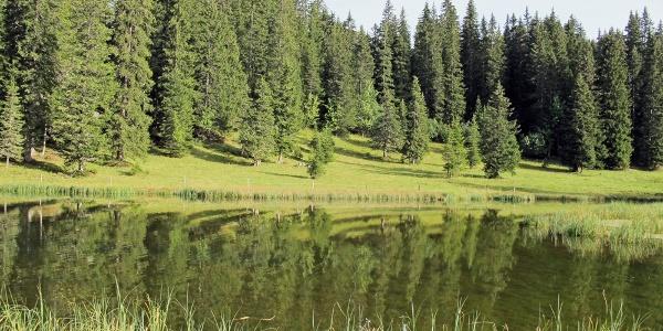 Moorsee bei Pré de la Vieille.