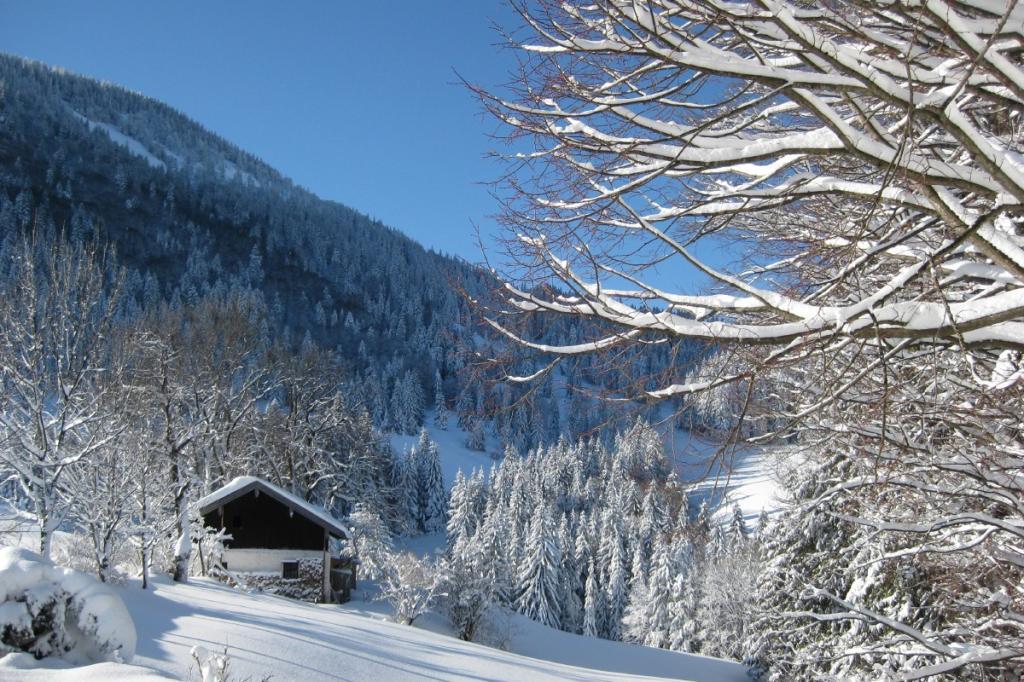 Schmidalm im Winter