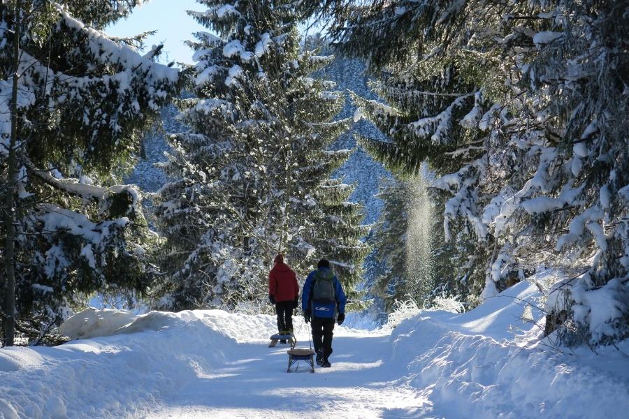 Rodeln von Frasdorf aus: Auf die Riesenhütte