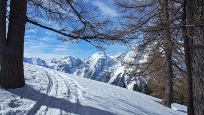 Aufstieg zur Bärenalm, prächtiger Einblick ins Sigistal, Schobertal, Wassertal, Turmtal, etc.
