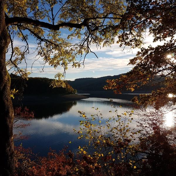 Hennesee Herbst