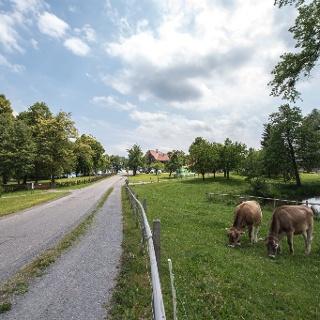 Seetal: Wandertipp Nr.1 Gelfingen - Horben - Baldegg