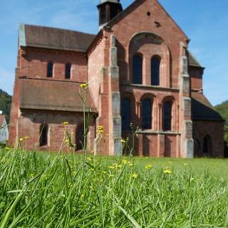 Zisterzienserkirche Eußerthal