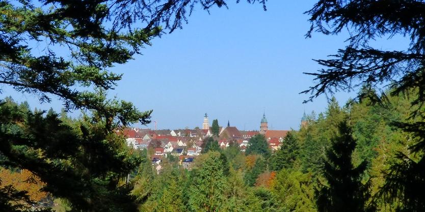Ausblick auf Freudenstadt bei der Schöneck-Hütte