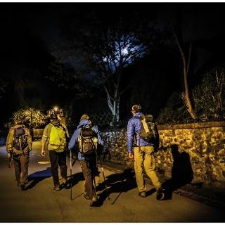 Nachtwandern an der Mosel