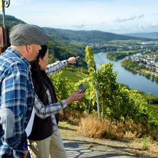 Blick von der Burg Landshut auf Kues und Mosel