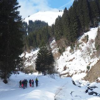Rodelstrecke von Donnersbachwald zum Mörsbachwirt 1290 m