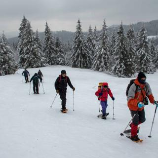 Auf Schneeschuhen am Feldberg.