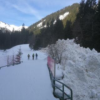 Aufstieg über die Rodelbahn zur Mörschbachhütte