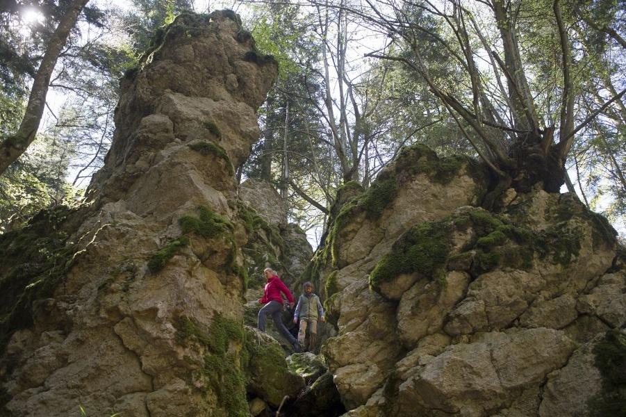 Traufgang Felsenmeersteig in Albstadt