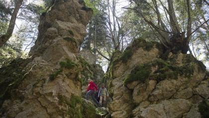 Felsenmeer Traufgang Felsenmeersteig