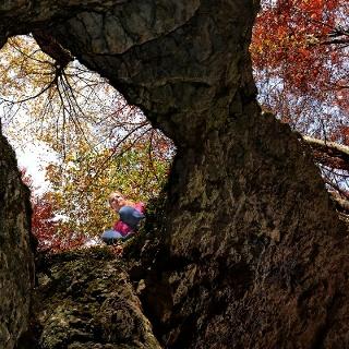Heidensteinhöhle