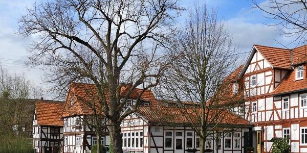 Dorfanger in Altenburschla