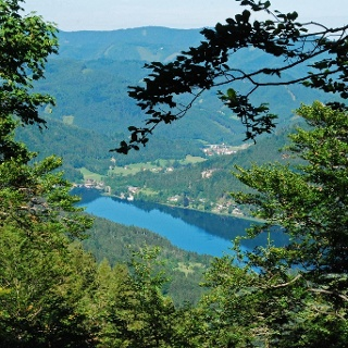 Bereits im Aufstieg zur Scheibe hat man einen schönen Blick auf den Lunzer See