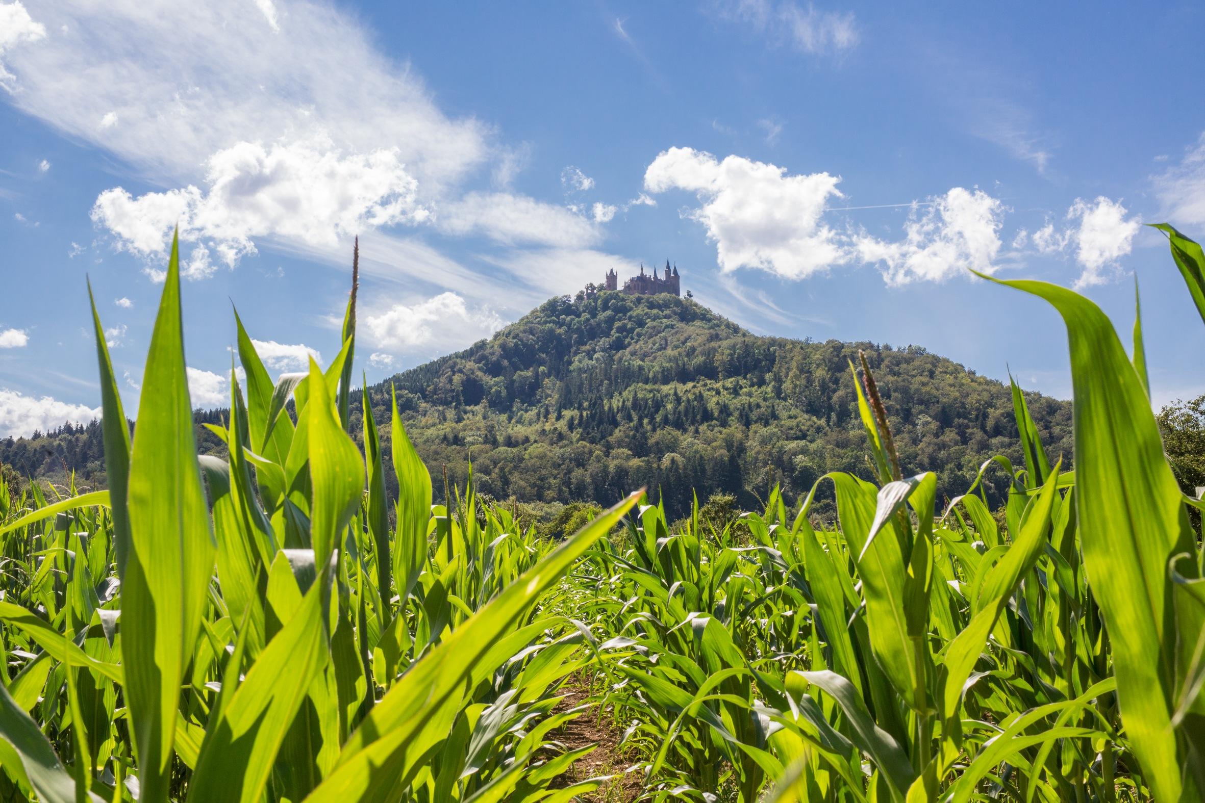 Hechingen-Boll Blick auf die Burg Hohenzollern