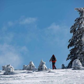 Schnee- und Eisskulpturen am Herzogenhorn.