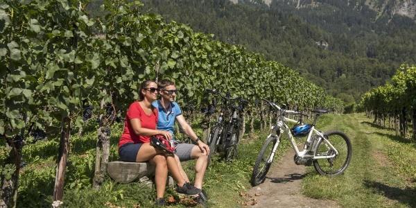 Zwischenstopp in den Weinreben