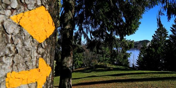 Die Wanderwege am Weissenstein sind gut markiert.