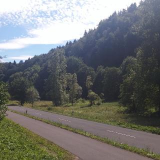 Radweg kurz nach Lehendorf