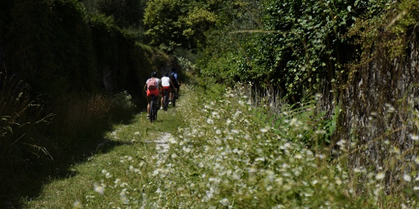La vecchia strada in zona Roncaglie