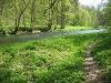 Idyllischer Wegverlauf an der Bühler   - © Quelle: Hohenlohe + Schwäbisch Hall Tourismus e.V.