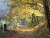 Herbststimmung auf dem Bühlertalwanderweg   - © Quelle: Hohenlohe + Schwäbisch Hall Tourismus e.V.