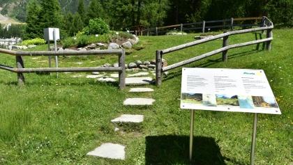 Ricola-Kräutergarten in Pontresina