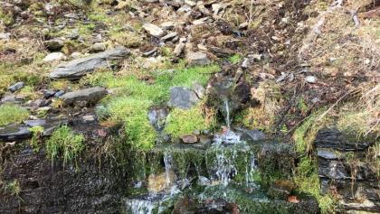 Somborn-Quelle