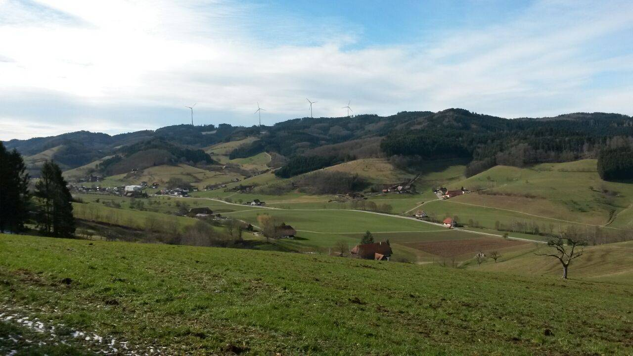 Blick ins Welschensteinacher Tal