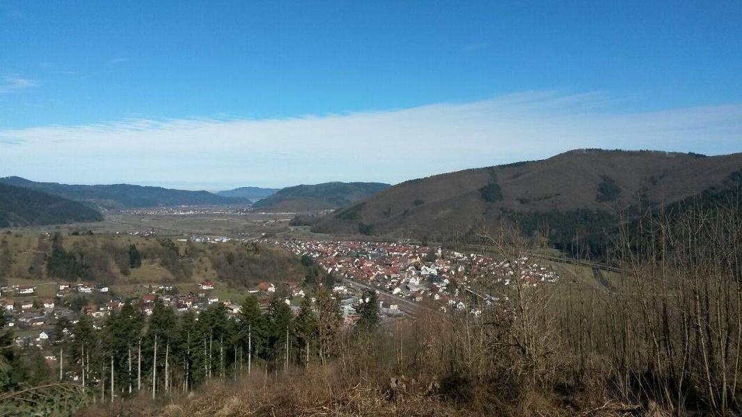 Trümmlewald Tour