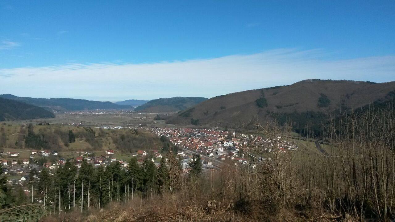 Blick vom Artenberg auf Steinach