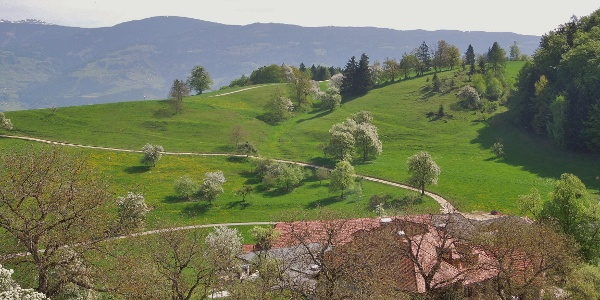 Blick von der Ruine Rabenstein u. Gh. Rabensteiner
