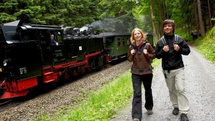 Fotostop Fichtelbergbahn am Gelben Weg