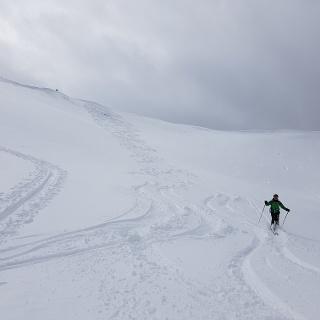 Der Gipfelhang des Karkogel (2. 087 m)
