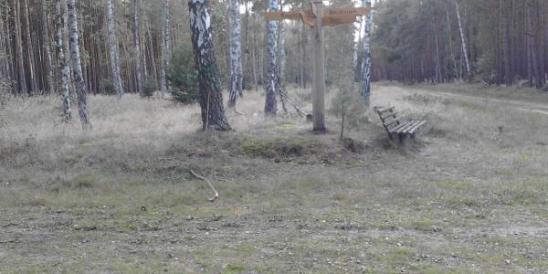 Über die historische preussische Poststraße kommen wir zum Fünfwege-Kreuz im Blätzer Wald