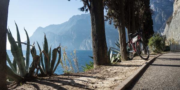 Auf dem Radweg zwischen Riva del Garda und Torbole