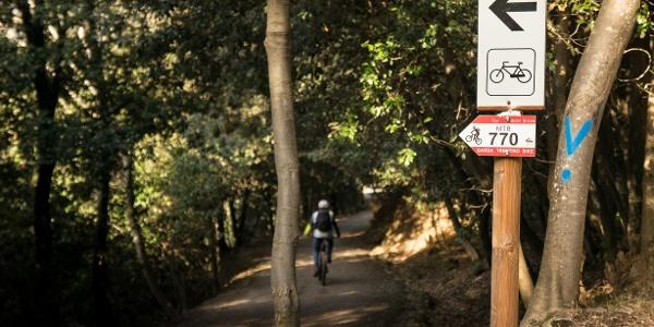 Einstieg zum Trail auf dem Monte Brione
