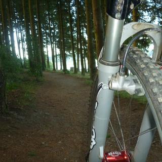 Tolle Waldpassagen