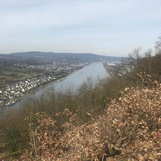 Blick auf Rhein u. Marksburg