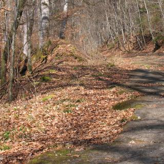 Reste einer alten Straße am Abstieg nach Bebenhausen